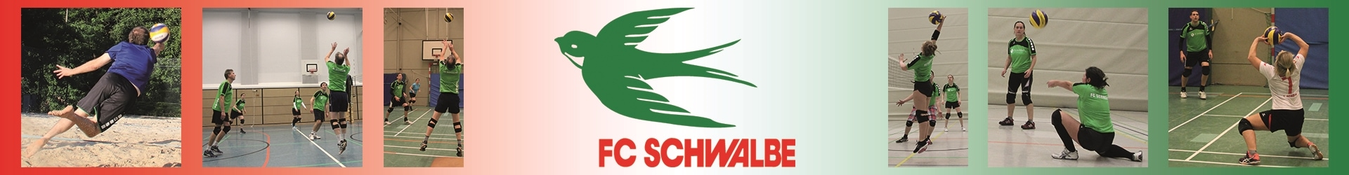 Volleyball FC Schwalbe Hannover